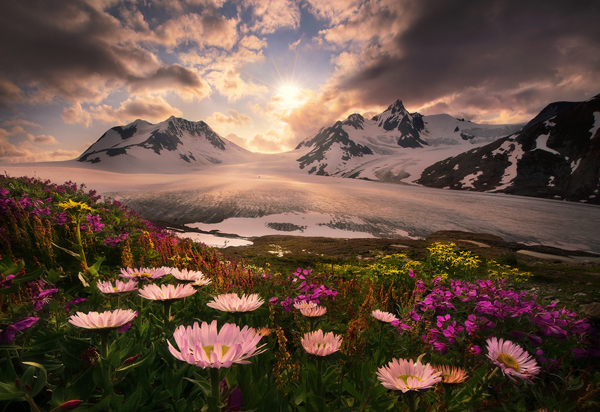 Interview: Marc Adamus
