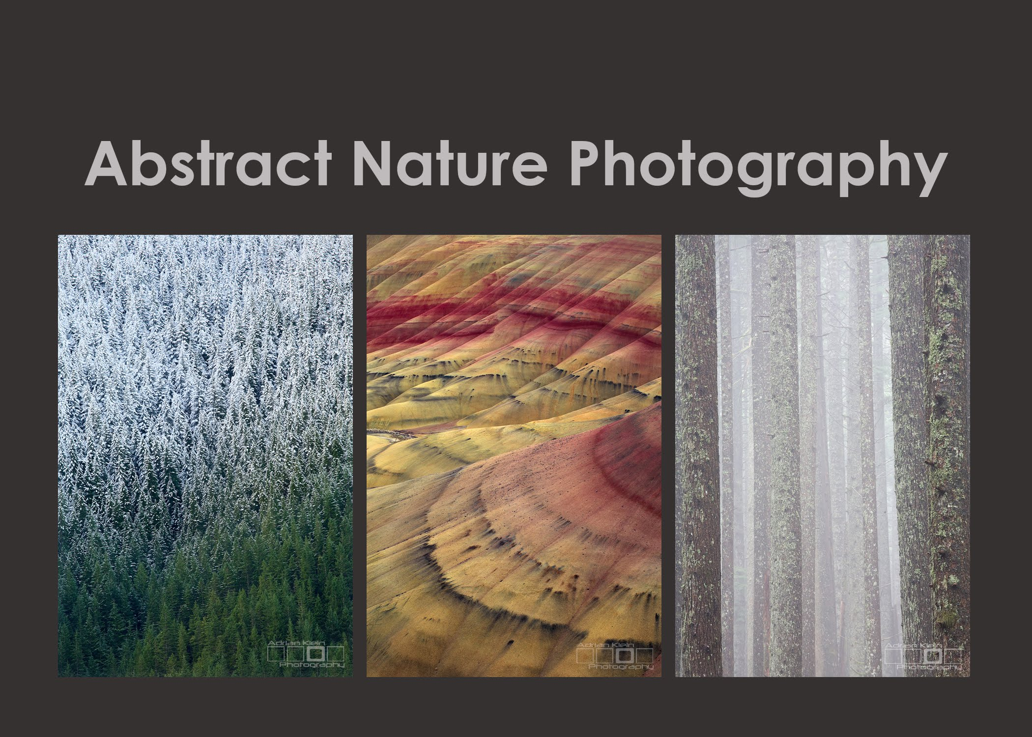 Abstract Nature Photography Revisited