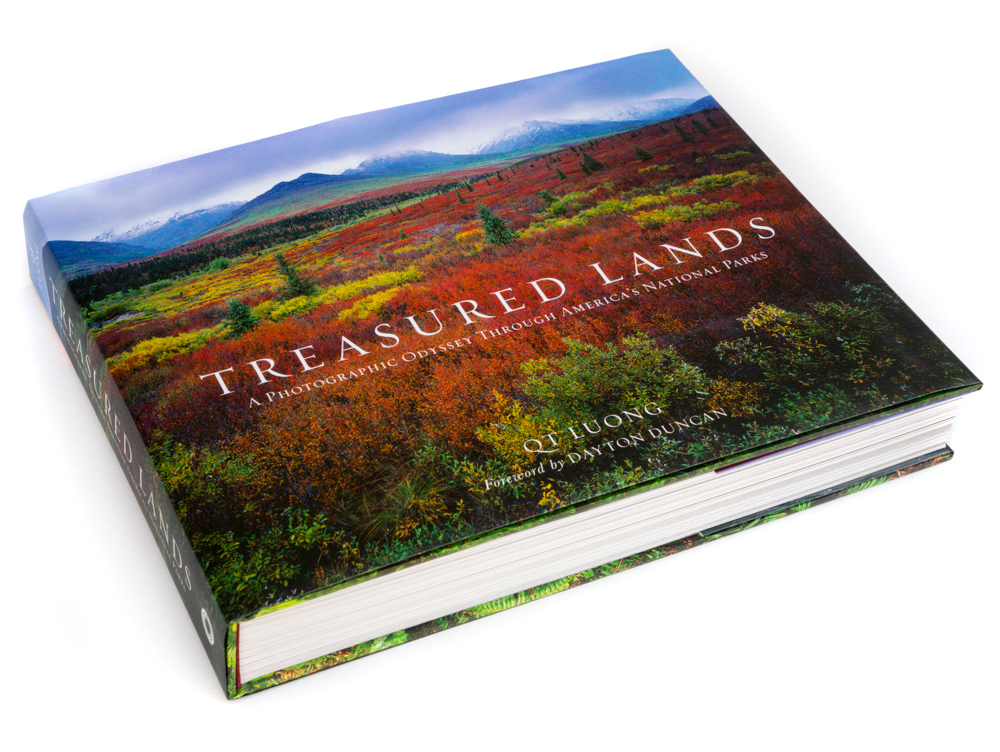Book Review: Treasured Lands by QT Luong