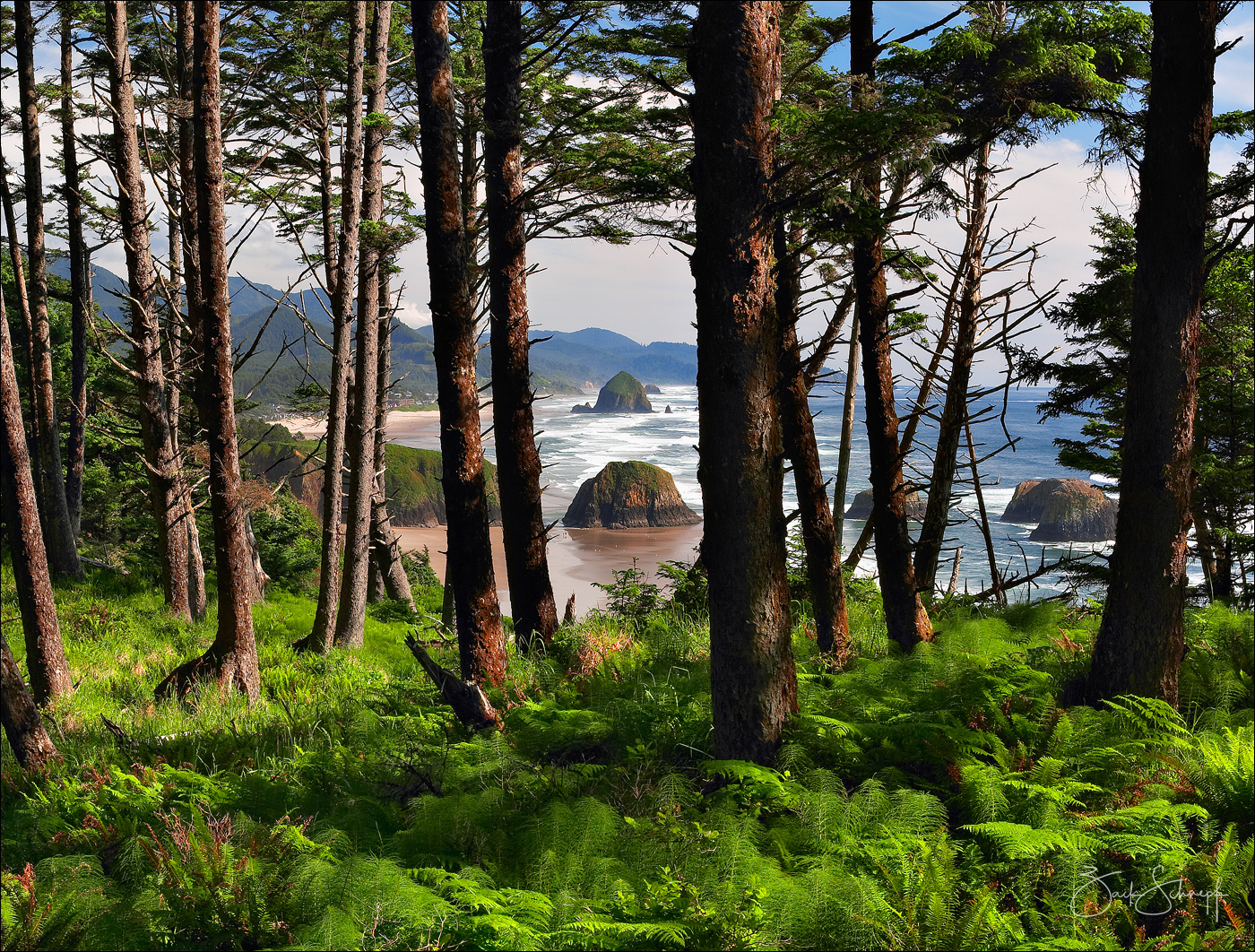 Cannon Beach, Oregon, Ecola, State Park, Oregon