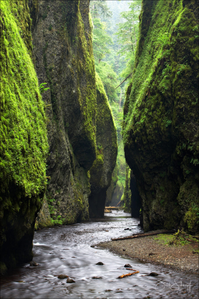 Oneonta Gorge, Columbia River Gorge, Oregon