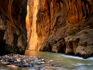 The Narrows, Zion National Park, Utah